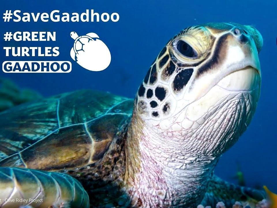 International Biodiversity Day #SaveGaadhoo